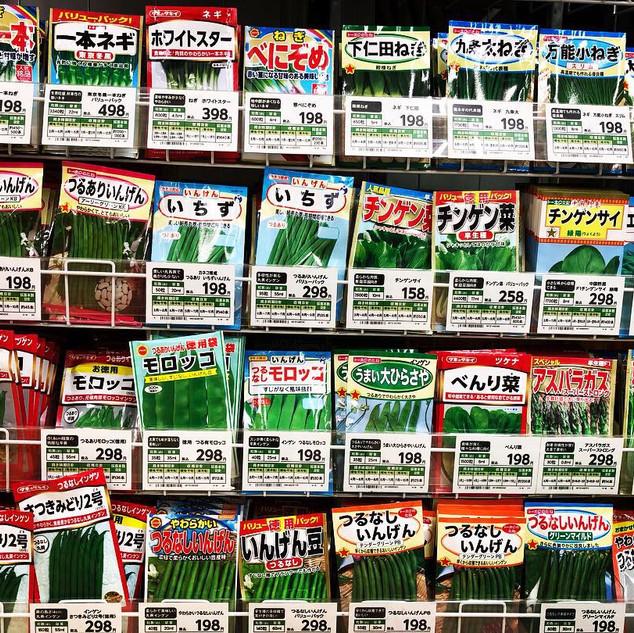 japanese seeds.jpg