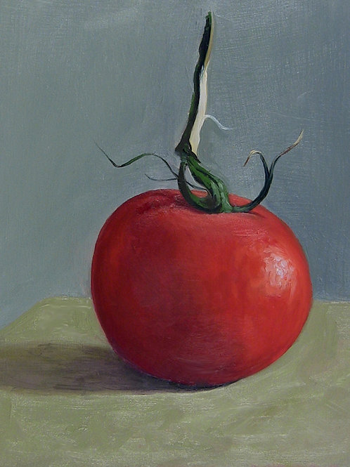 Single Tomato, Oil on Panel, 8 x 10 inches