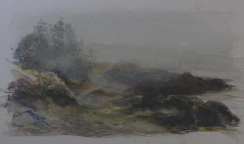 Fog Study, Nova Scotia