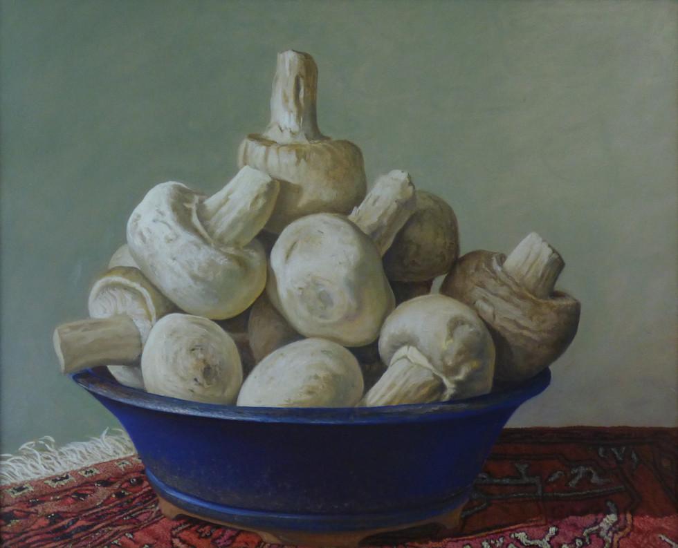 Bonsai Mushrooms