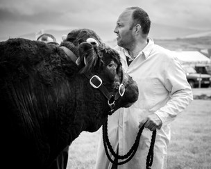 a man and his cow