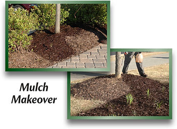 EnviroColor-mulch-spray-paint-before-after