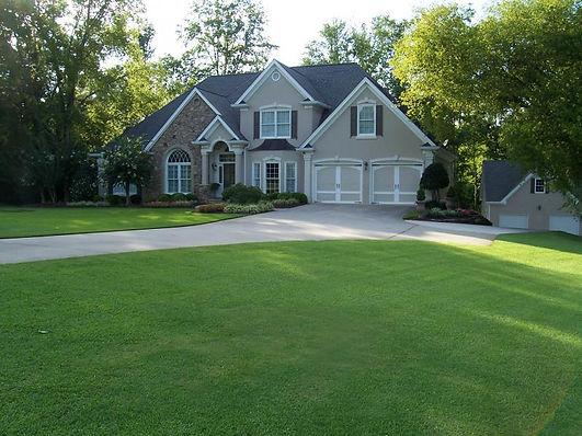 perfect lawn.JPG