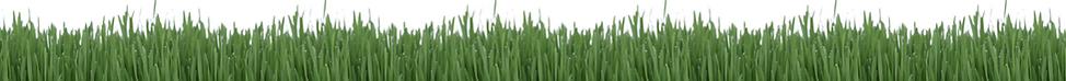 EnviroColor-green-grass-paint.pn
