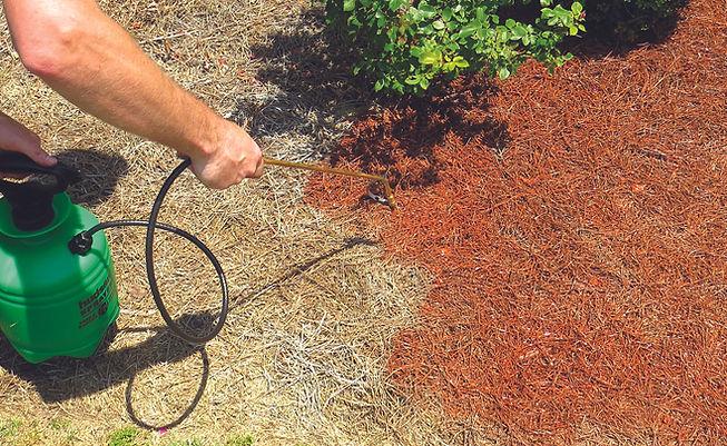 EnviroColor-Mulch-Pine Straw-Grass-Paint-D.I.Y. Instructions.jpg
