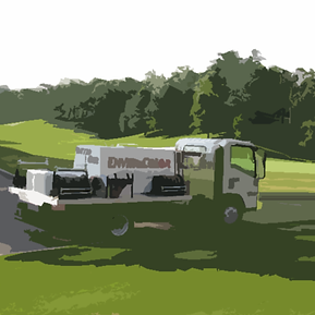 grass painting service provider