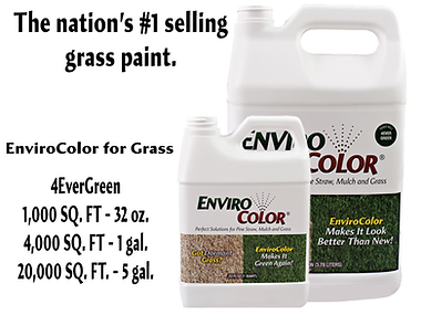 grass paint from EnviroColor