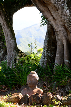 Percée du boudha sur la montagne