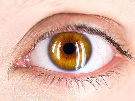 Body System Symptoms and Management - Eye