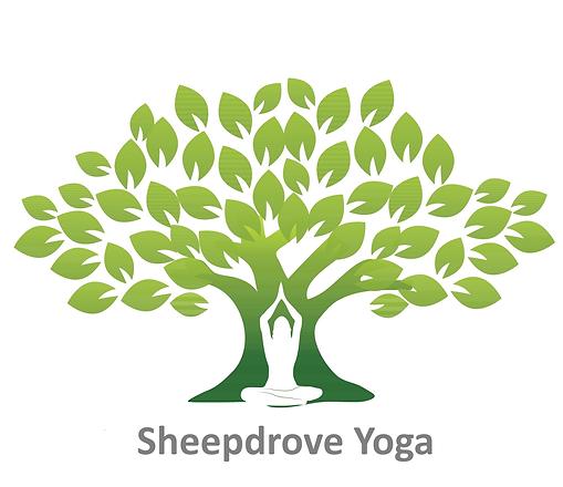 Yoga 2-trans.png