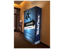 Teleflex Meeting (Hollywood theme)