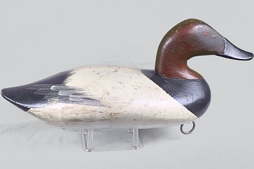 Paul Gibson Canvasback Drake