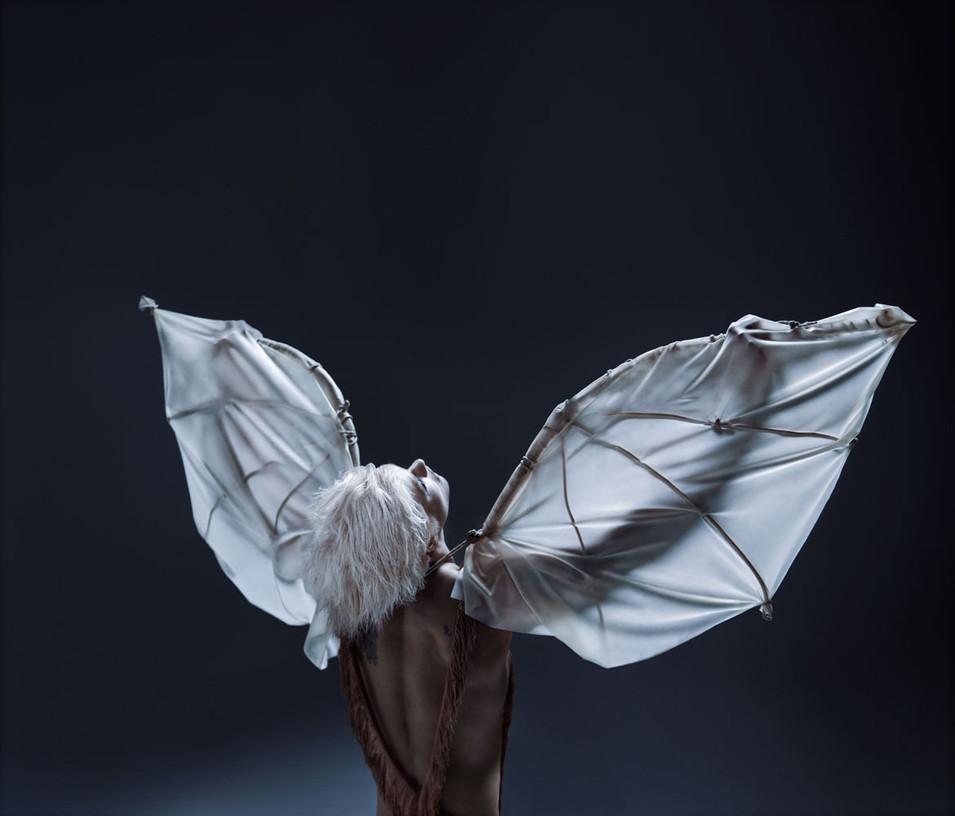 creatures-wings-SQ.jpg