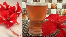 Summer Hibiscus drink