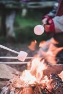 Toasting marshmallows.jpg