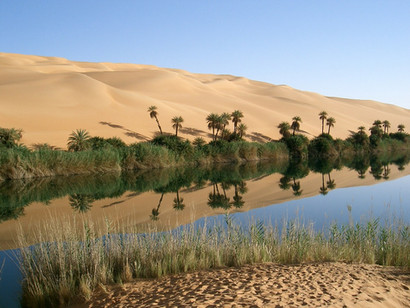 oasis-67549_1280.jpg