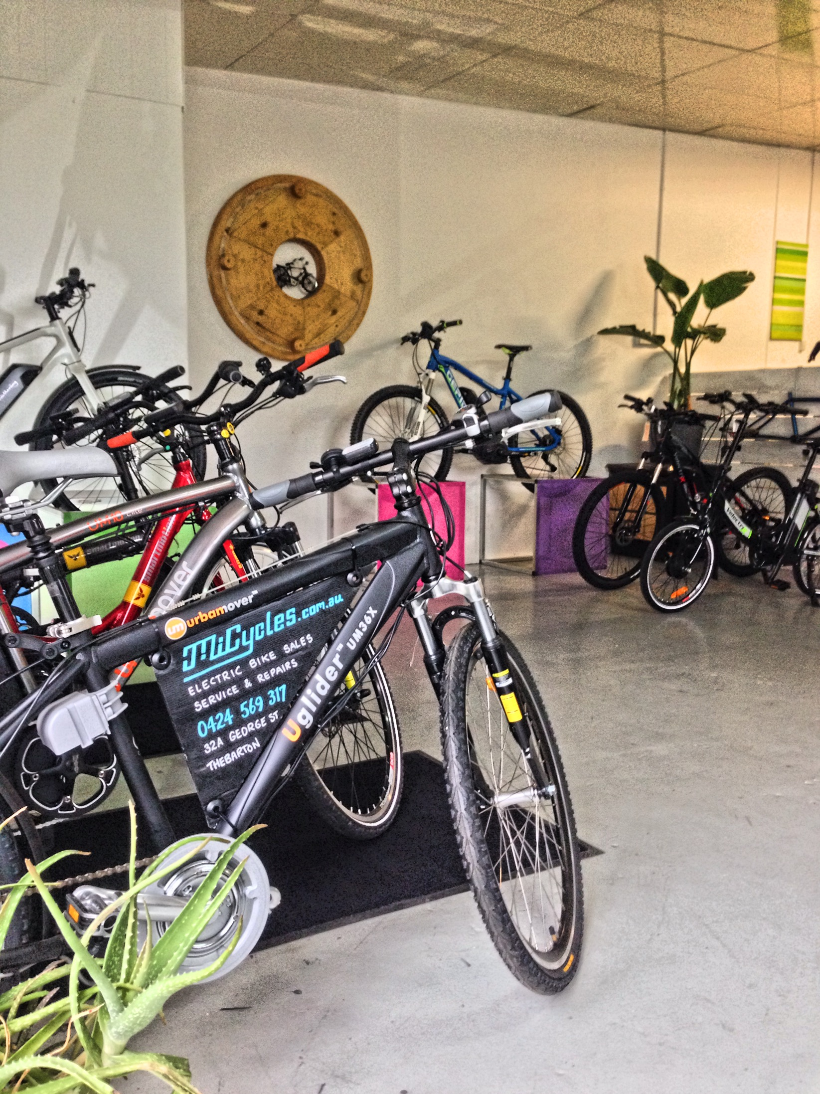 MiCycles Adelaide Showroom.JPG