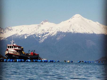 Tips y consejos para viajar por Patagonia en Agosto