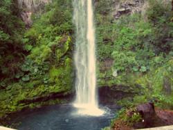 Cascada Reserva Llanquihue Chile