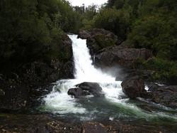 Alerce Andino Park Chile