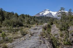 2018 Reserva Llanquihue Calbuco (12)