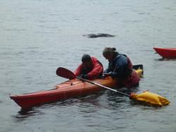 Curso de kayak de mar Chile