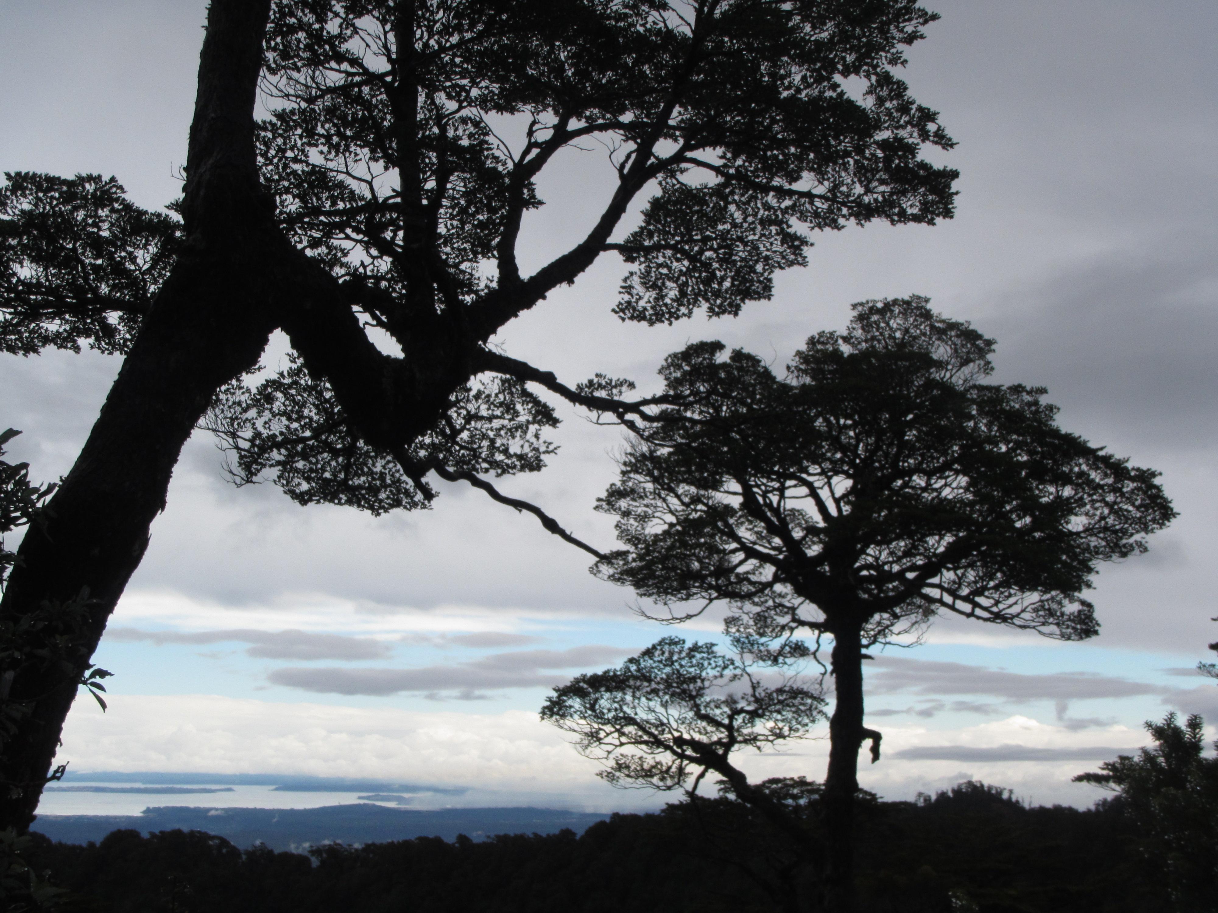2015.02 Reserva Llanquihue (14)
