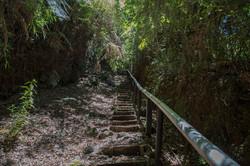 2018 Reserva Llanquihue Calbuco (2)