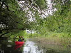 Kayak en Puerto Varas laguna la poza