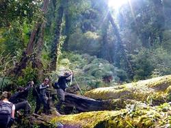Valle Cochamo Sendero Las Cascadas y el Anfiteatro