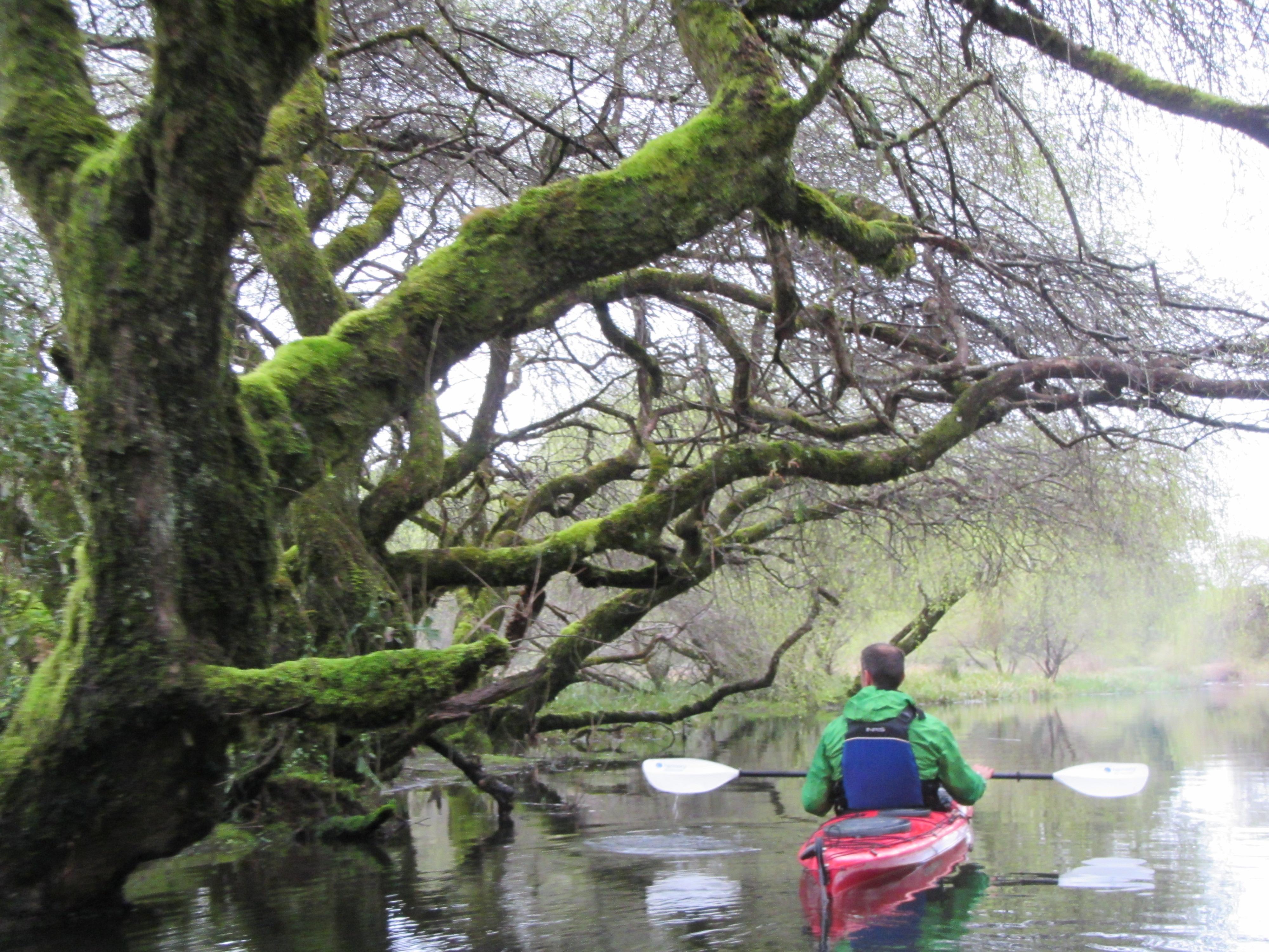 2015 Kayak laguna la poza (4)
