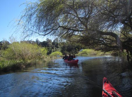 Laguna la Poza en Puerto Varas