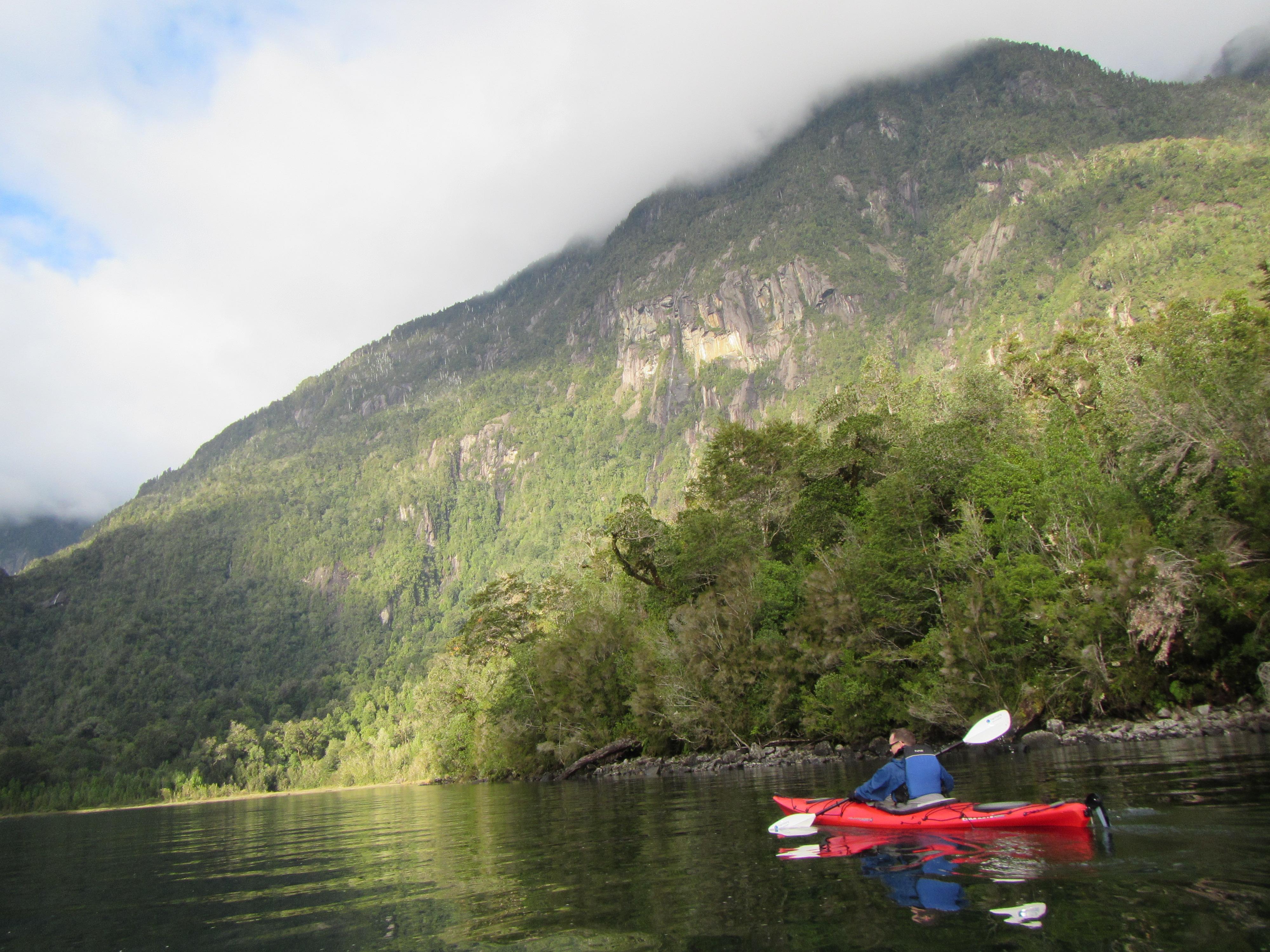 Pumalin Park Fjord of Patagonia