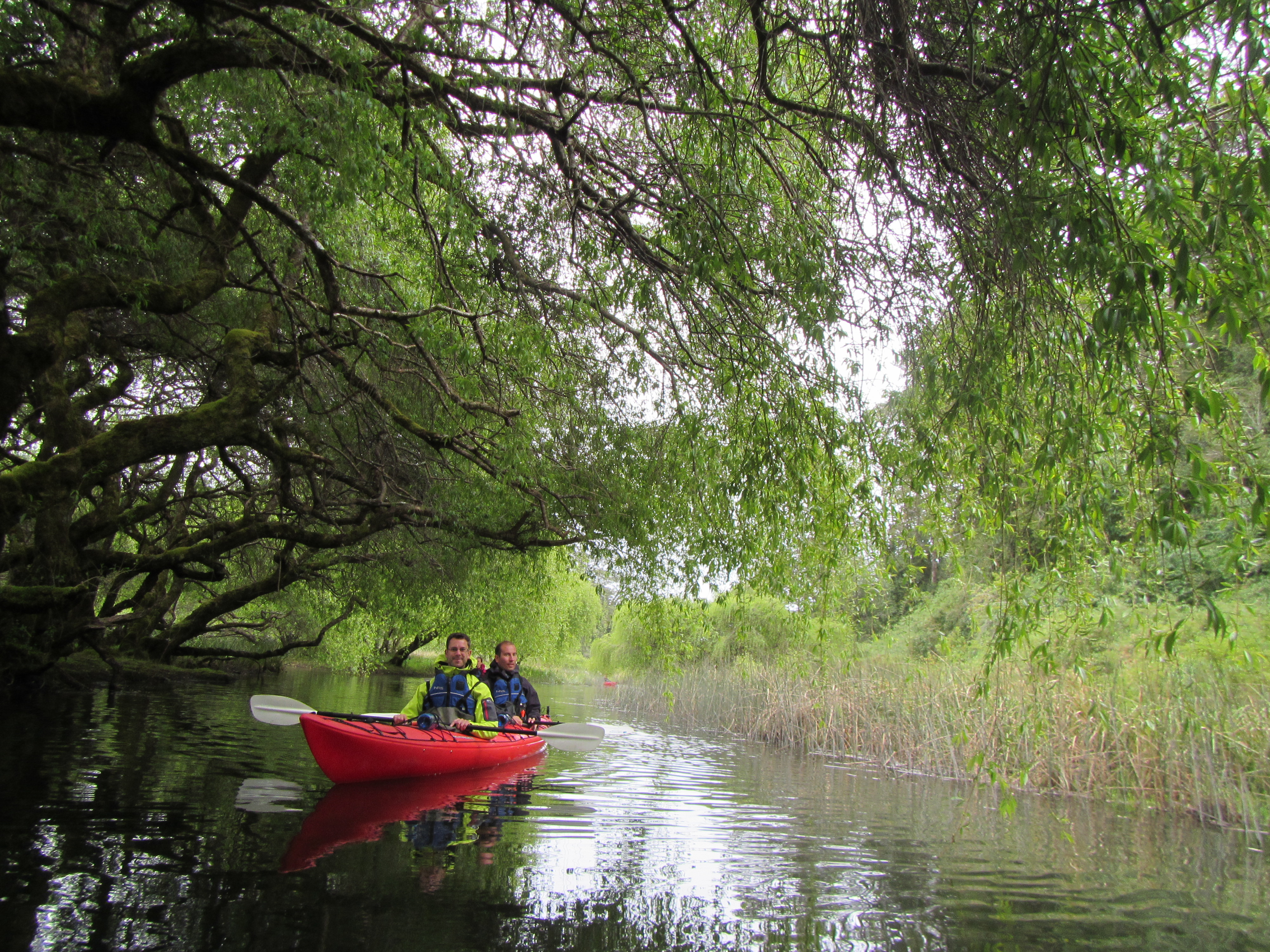 Kayak Laguna La Poza Puerto Varas