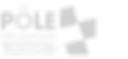 logo_pole-300x138_edited.png