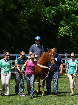 staff and clients with horse
