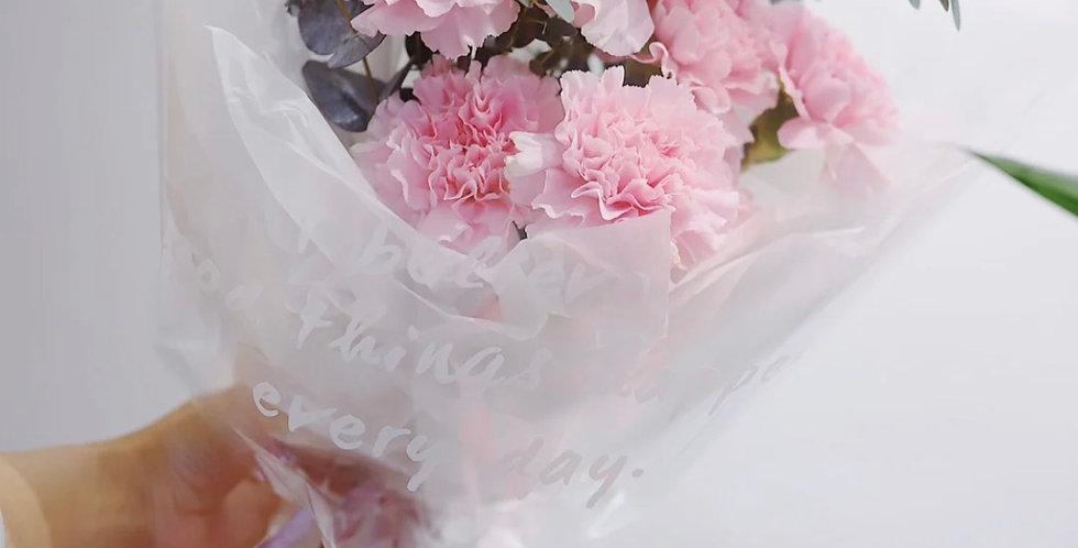 Carnation-Medium