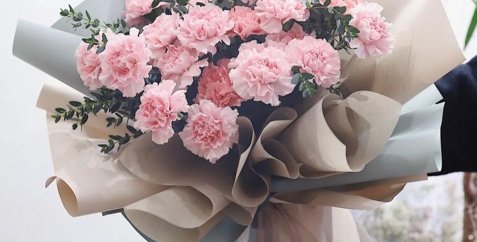 Carnation-Large