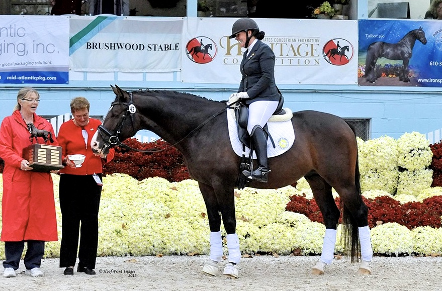 Artie - Dressage at Devon, 2015