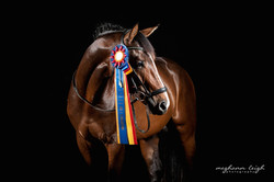 Artie with USEF Awards 2015