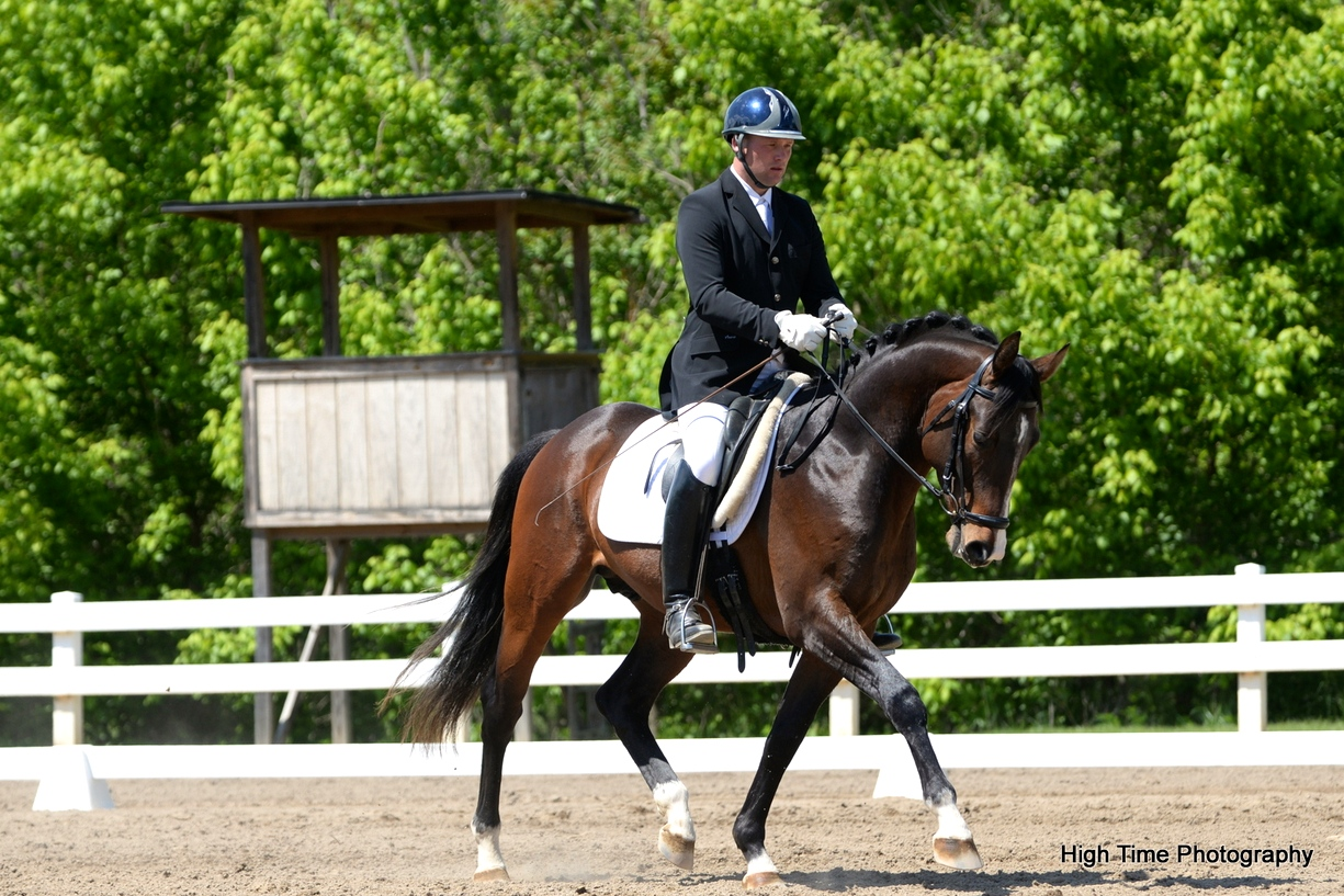 Artie - Dressage at Lexington, 2014