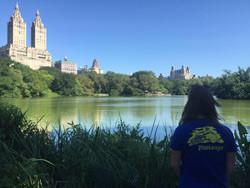 Pimiango en Nueva York