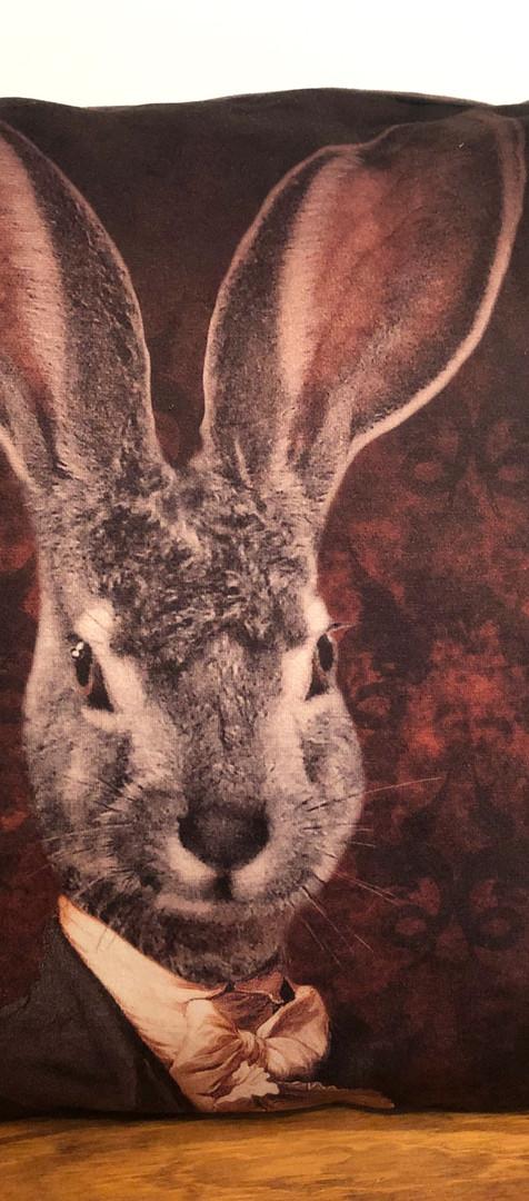 Coussin Velour - Aristo Hare