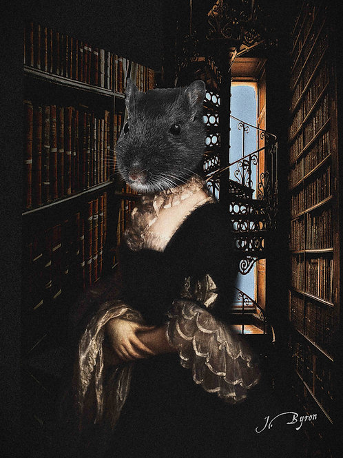 DARK. The Librarian