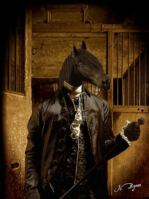 """ Black Horse """