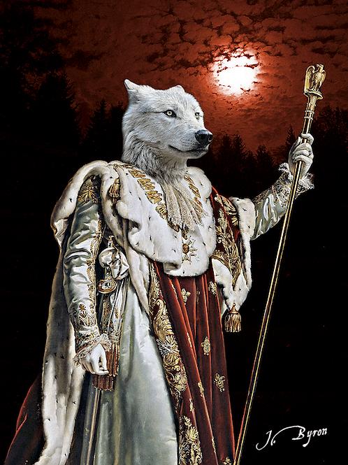 """"""" Moon Wolf """""""