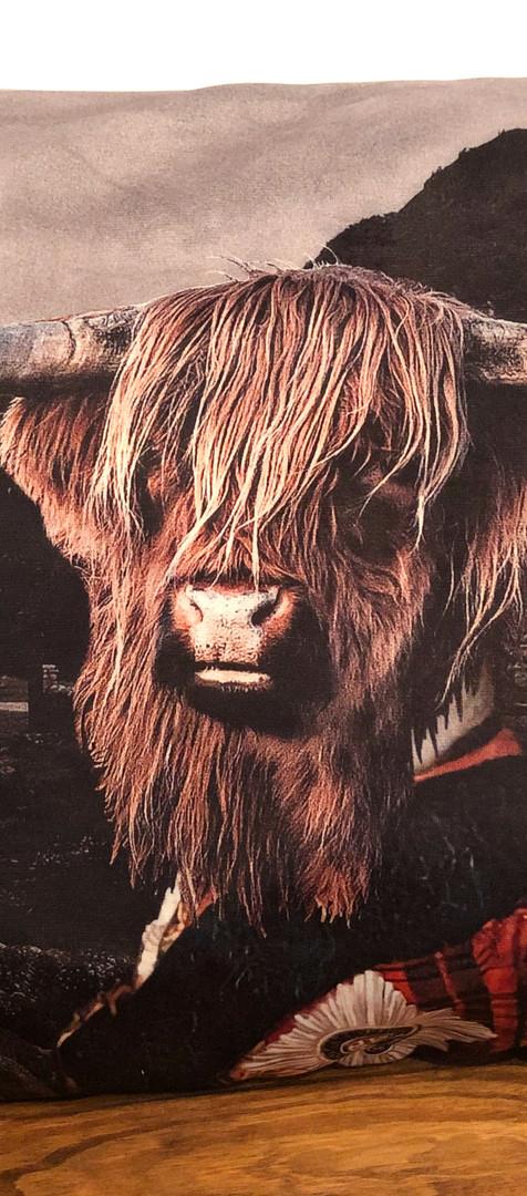 Coussin Velour - Jack the Highlander