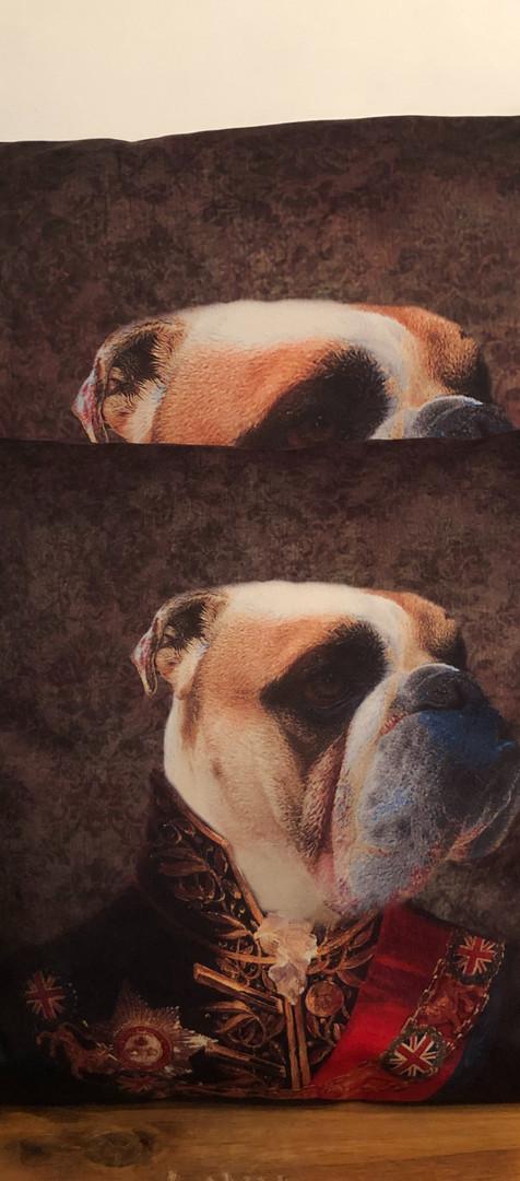 Coussin Velour - Bulldog Officer