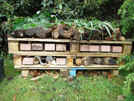 Our New Bug Hotel