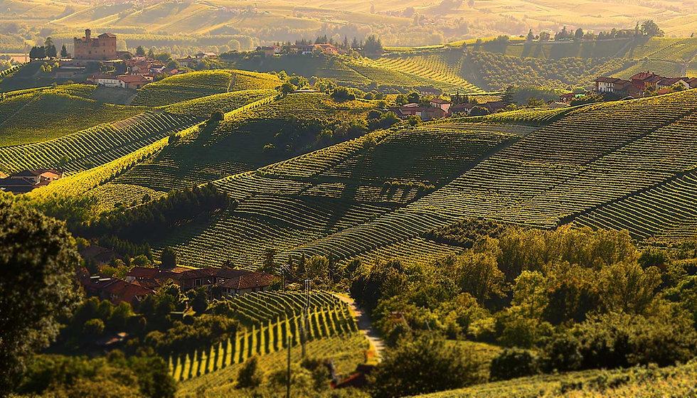 unesco-vineyard-landscapes.jpg